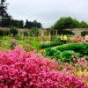 milyのアイルランド紹介18: Marlay Park